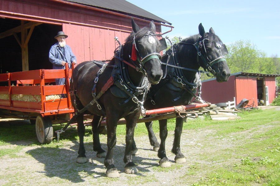 yoders-amish-home-4
